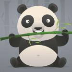 The Panda Algorithm May Look Cute But Remember, Bears Bite